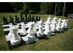 Garden Giant Chess Set With Plastic Board
